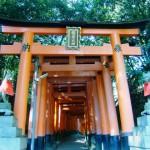 神社で初詣ランキングin京都 おすすめ神社へ初詣して深まる二人の絆!