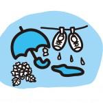 除湿機で衣類乾燥をする除湿の違いと電気代は?効果的な使い方