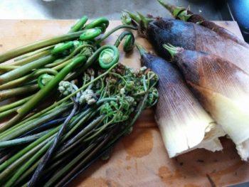 塩漬けのわらびの色鮮やかな戻し方!早く簡単に抜く方法と調理の注意点